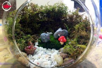 Make Your Own Moss Terrarium