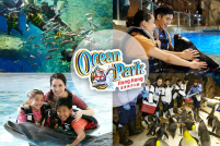 海洋公園海豚、企鵝、海豹生態接觸