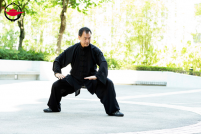 Tai Chi and Qigong Class for Five